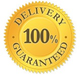 Courier Delivery Service Guaranteed Logo